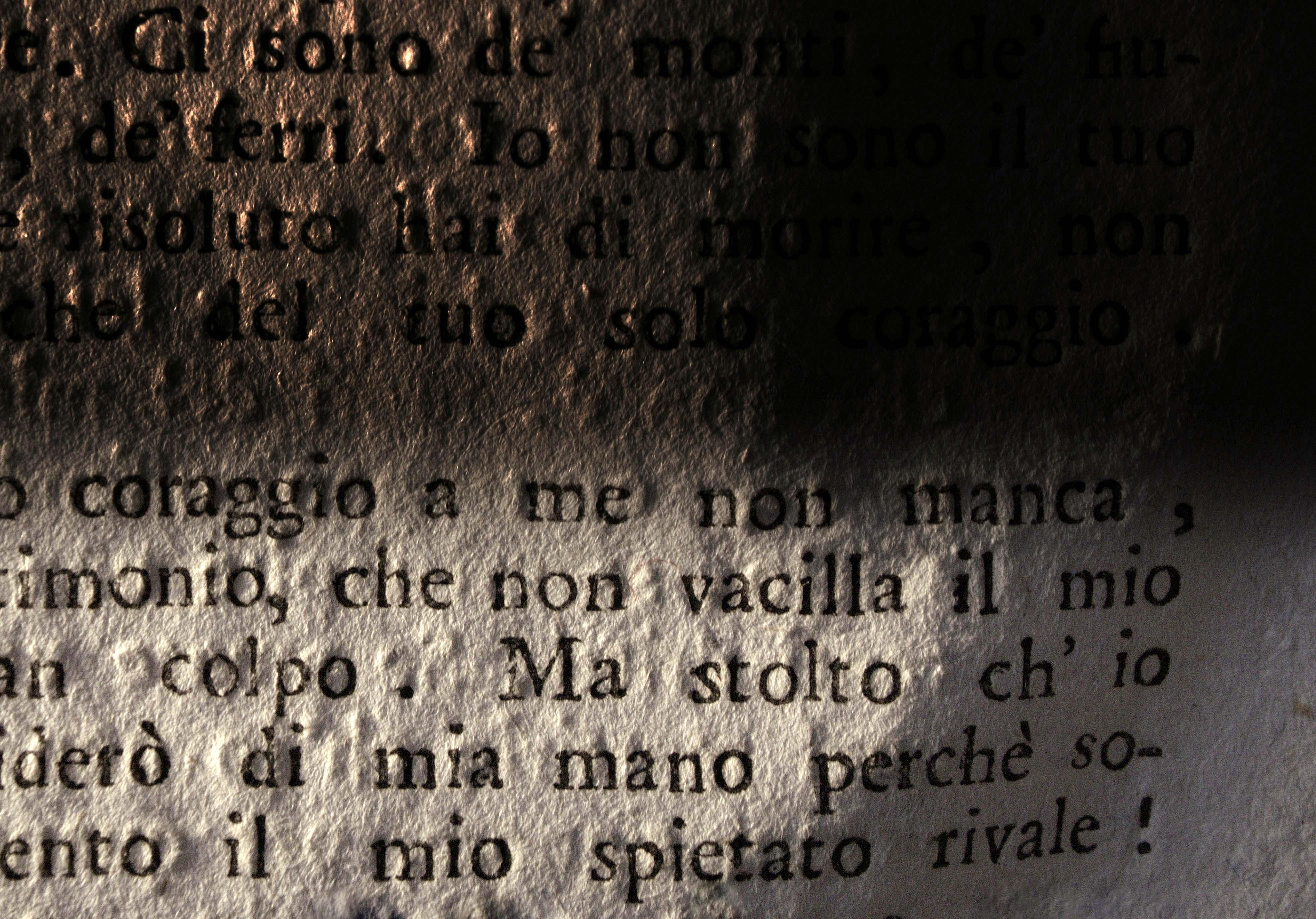 Luisa Menazzi Moretti, Coraggio, 2013, Serie Words, cm 42x60