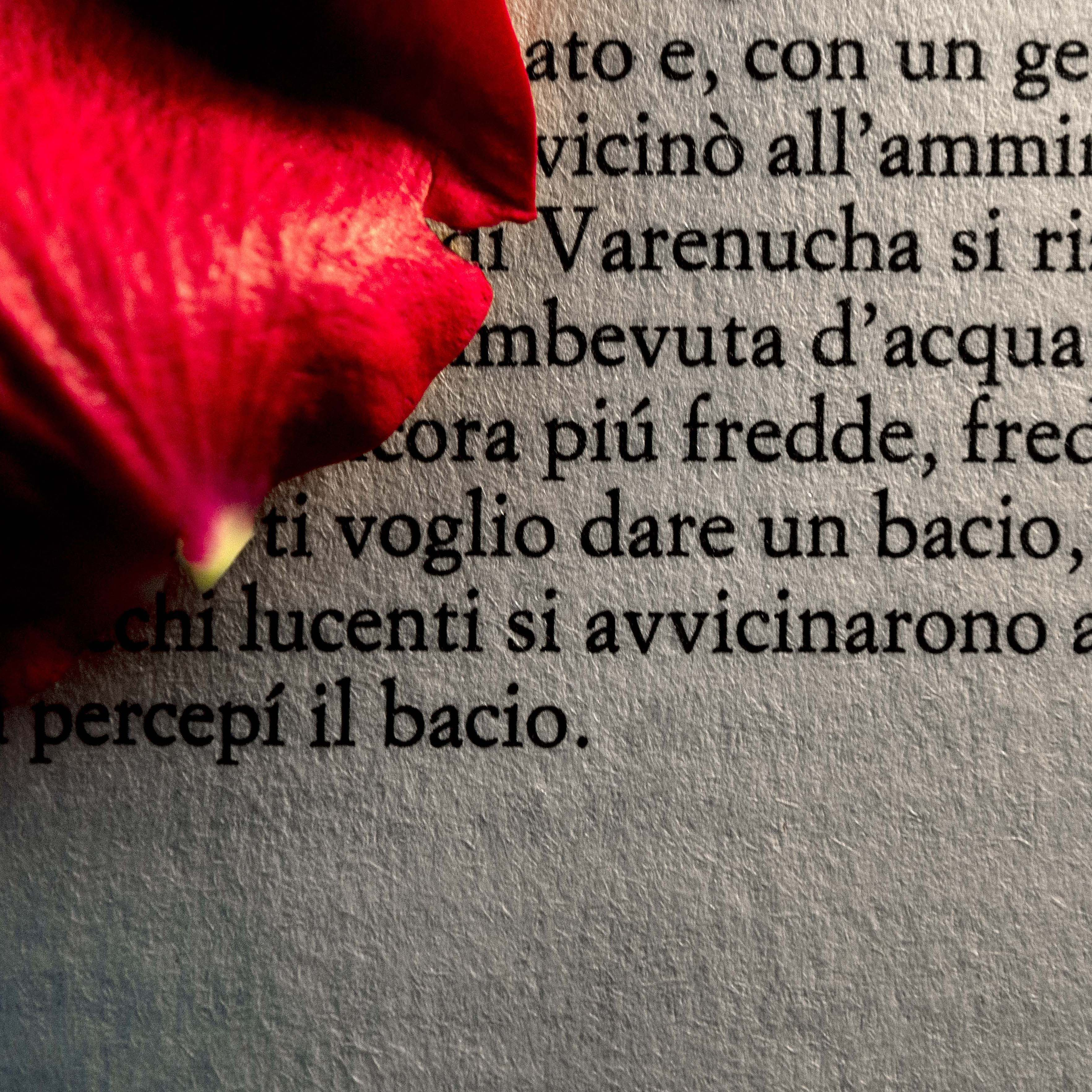 Luisa Menazzi Moretti, Romanzo d'amore, 2012, Serie Words, cm 60x60